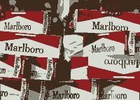 <a href='http://campwarcworlzil.narod.ru/kakuyu-vybrat-elektronnyh-sigaret.html'>какую выбрать марку электронных сигарет</a>